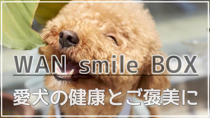 ワンスマイルボックス(WAN smile BOX)の評判&口コミ|中身や値段も紹介