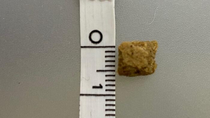 ドッグフード工房のお試しサンプルの粒の大きさの写真