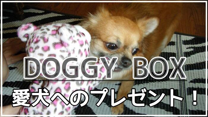 ドギーボックス(doggy box)の口コミ&評判 中身やお試し値段、支払い方法など