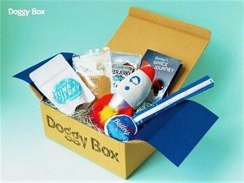 ドギーボックス(Doggy Box)8月号の画像
