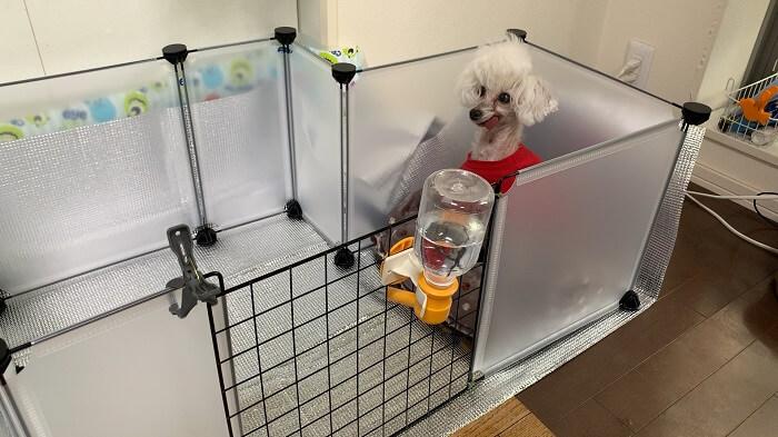 ダイソーのフリーマルチパネルで手作りした犬のサークル・ゲージと給水機