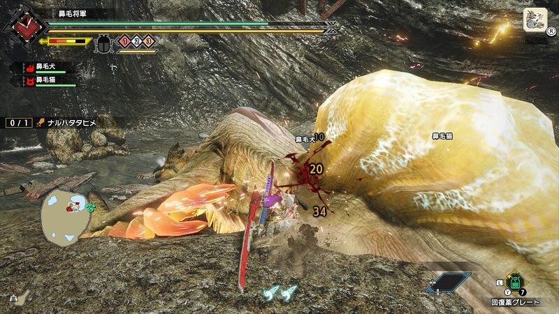 雷神龍ナルハタタヒメがダウンしたらお腹を攻撃