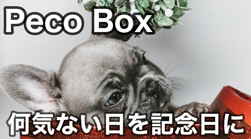 ペコボックス(PECOBOX)の評判&口コミ 中身や値段も紹介