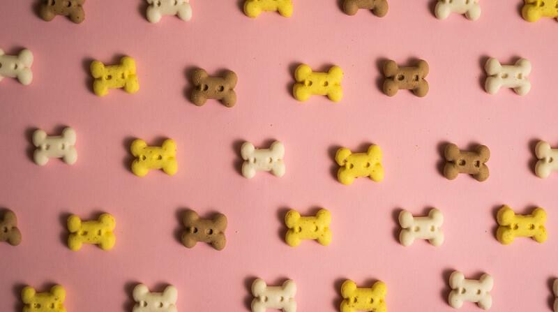 ヒューマングレードのドッグフード|クッキータイプ